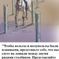 Dressage Solutions - лайфхаки для выездки (2) - фото wzP1RDGTPUA_wm-200x200, главная Фото , конный журнал EquiLIfe