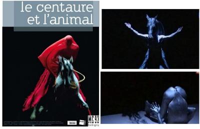 Конный театр Zingaro (Бартабас) начинает трансляцию своих спектаклей - фото 02-9, главная Новости События , конный журнал EquiLIfe