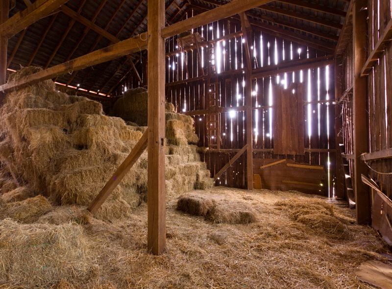 Правильное хранение сена - фото 01-01-2, главная Здоровье лошади Рацион Содержание лошади , конный журнал EquiLIfe