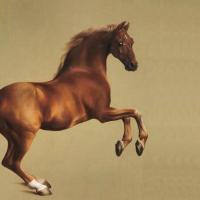 "Арт-челлендж: ""Уистлджакет"" Джорджа Стаббса - фото min-200x200, главная Фото , конный журнал EquiLIfe"