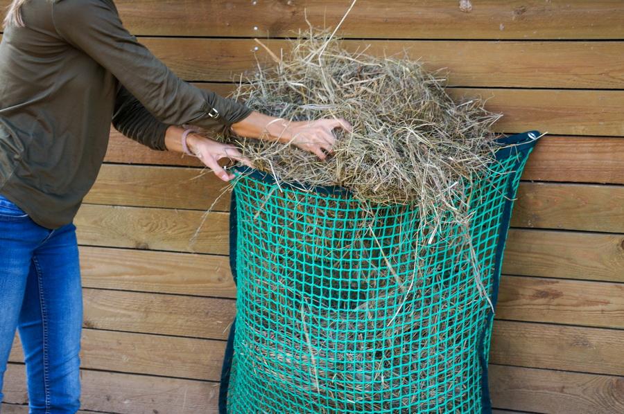 Слоуфидер или медленная кормушка для лошадей - фото DSC030301, главная Здоровье лошади Интервью Рацион Содержание лошади , конный журнал EquiLIfe