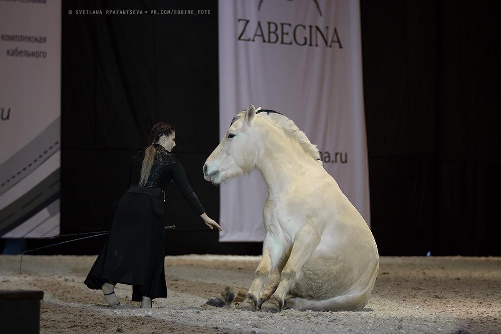 Нина Филатова: Путь на «Эквитану» - фото FJ9A0629, главная Конные истории , конный журнал EquiLIfe