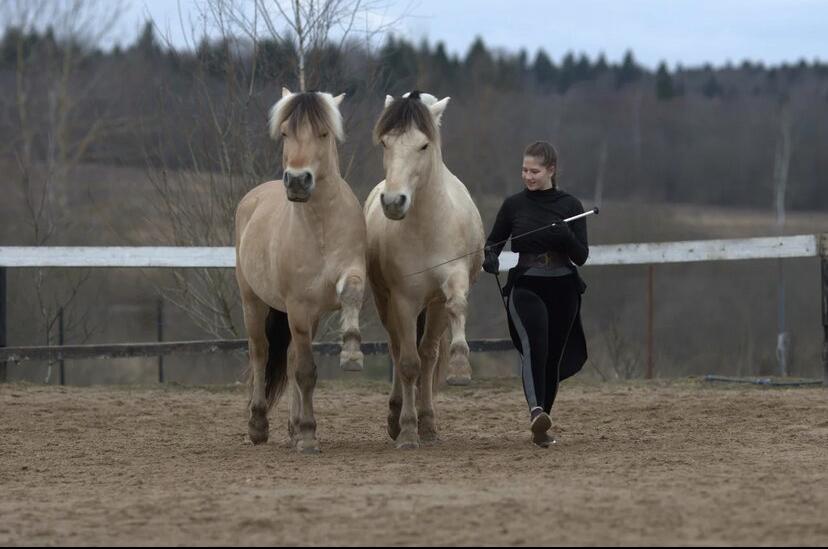 Нина Филатова: Путь на «Эквитану» - фото IMG_1310, главная Конные истории , конный журнал EquiLIfe