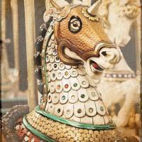 Карусельные лошадки - фото 11-200x200, главная Конные истории Фото , конный журнал EquiLIfe