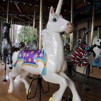Карусельные лошадки - фото 28-200x200, главная Конные истории Фото , конный журнал EquiLIfe