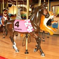 Карусельные лошадки - фото 29-200x200, главная Конные истории Фото , конный журнал EquiLIfe