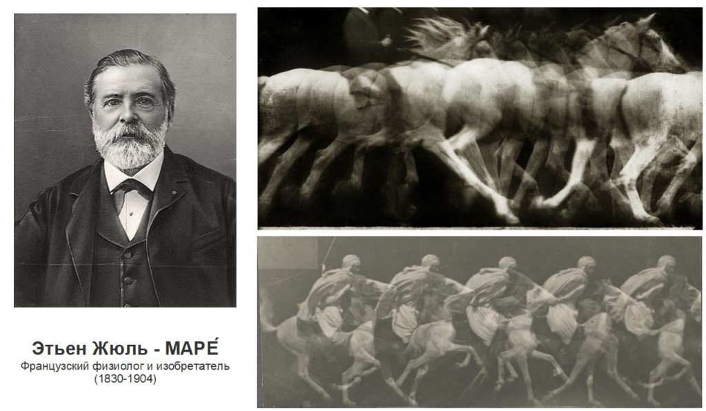 """Кадры """"лошадь в движении"""" (The Horse in Motion) от Эдварда Мейбриджа - фото -в-движении-маре-1024x596, главная Разное , конный журнал EquiLIfe"""