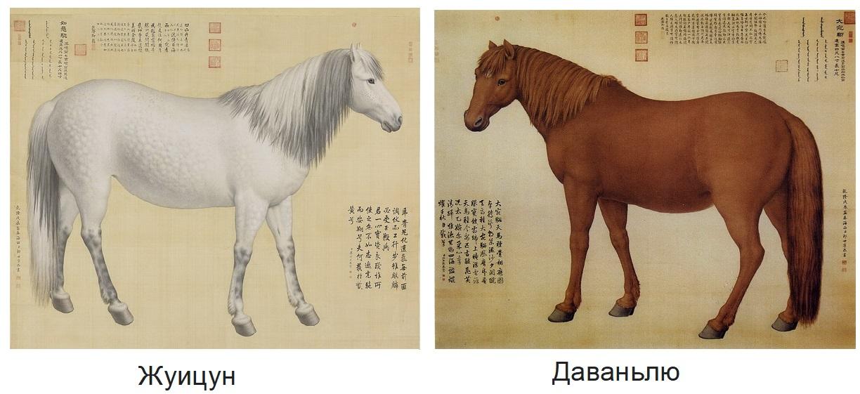 10 коней китайского императора - фото 15, главная Конные истории Разное , конный журнал EquiLIfe