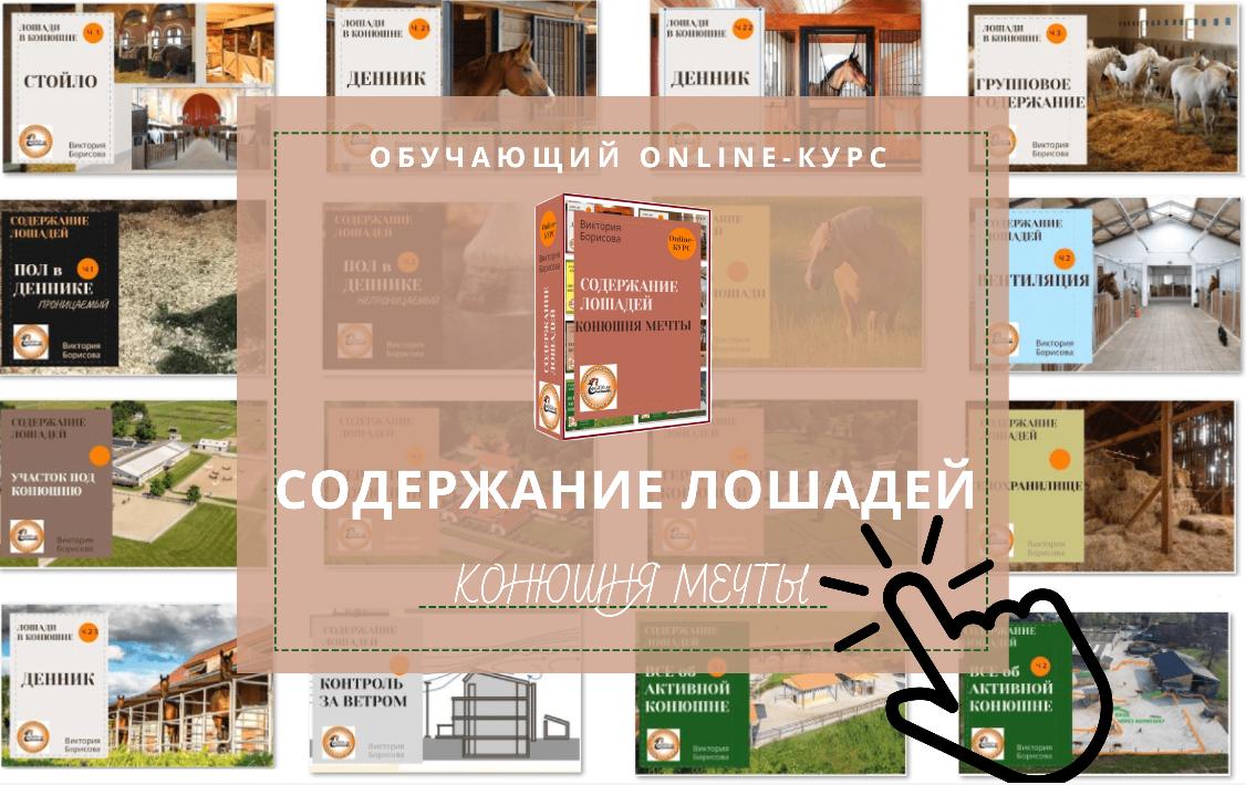 Обучение - фото -курса3, , конный журнал EquiLIfe