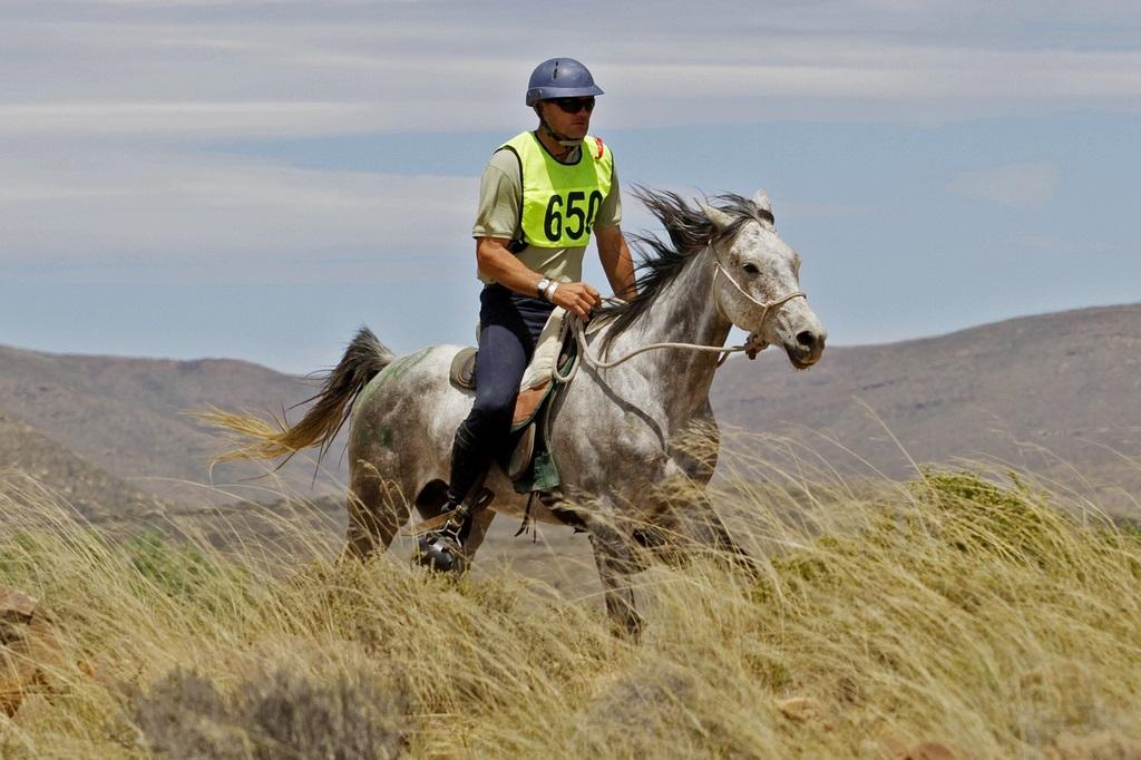 Арабская чистокровная порода - фото 1140, главная породы лошадей , конный журнал EquiLIfe