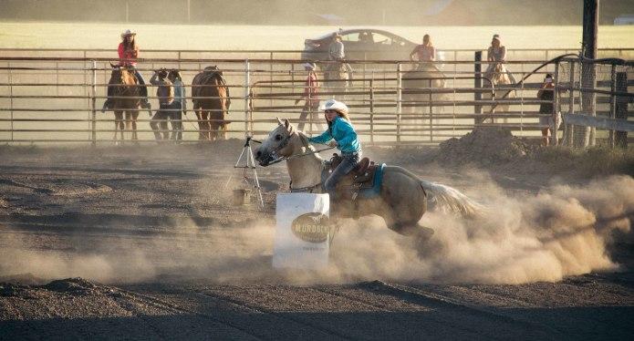Лучшие фильмы про лошадей за последние 5 лет - фото Bezpolezniy, главная Фильмы про лошадей , конный журнал EquiLIfe