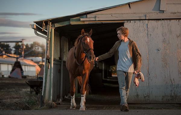 Лучшие фильмы про лошадей за последние 5 лет - фото Lean-on-Pete, главная Фильмы про лошадей , конный журнал EquiLIfe