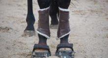 Лошади понимают намерения человека - фото image-1-220x119, главная Интересное о лошади Новости Поведение лошади , конный журнал EquiLIfe