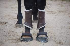 Инновации в конской обуви - фото image-1, главная Копыта Новости , конный журнал EquiLIfe