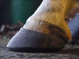 Инновации в конской обуви - фото image-2, главная Копыта Новости , конный журнал EquiLIfe