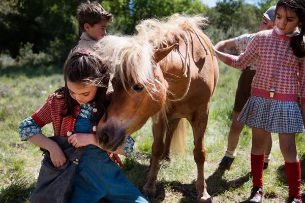 Лучшие фильмы про лошадей за последние 5 лет - фото poli, главная Фильмы про лошадей , конный журнал EquiLIfe